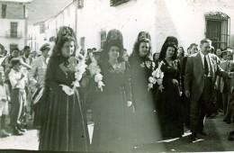 Majoralesses 1948-1949